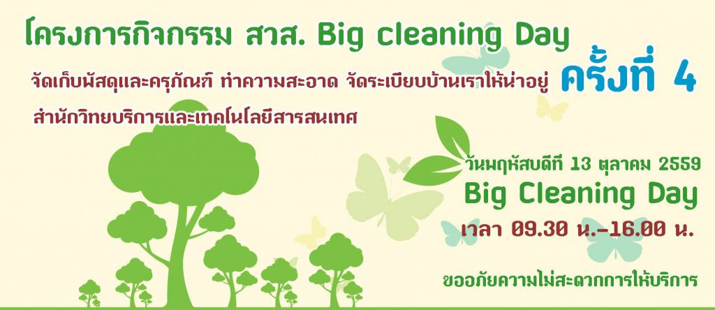 big-cleaning-day-4